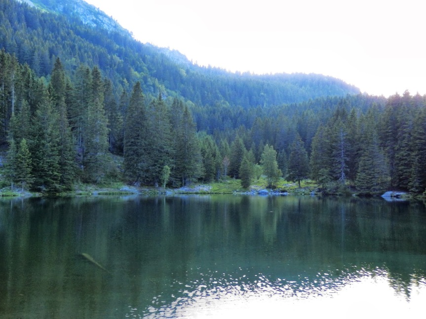 Alpes_1