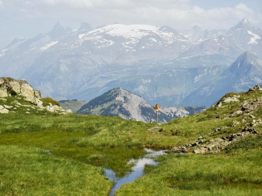 Alpes_6